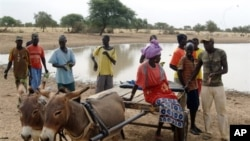 Villagers gather in front of a dam near the village of Labgar in northern Senegal on 12 Nov 2009. There is little to show for it apart from small acacia shrubs, but Senegal's leader believes in a Great Green Wall that will stem desertification across Afri