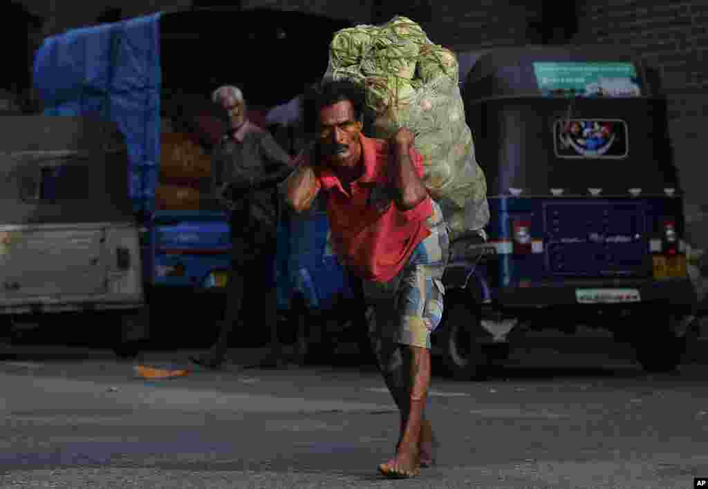A Sri Lankan daily wage laborer carries a sack of cabbage on a street in Colombo.