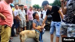 Thịt chó và vây cá mập là món ăn khoái khẩu tại Trung Quốc.