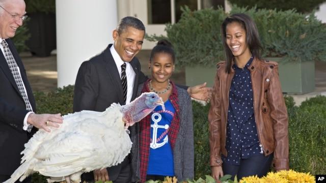 Tổng thống Obama cùng con gái Sasha và Malia bên cạnh con gà tây được 'ân xá' trong dịp lễ Tạ Ơn tại Tòa Bạch Ốc, ngày 22/11/2012.