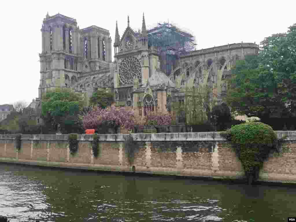 اختصاصی صدای آمریکا | کلیسای نوتردام یک روز پس از آتش سوزی مهیب؛ به گفته مقامهای شهرداری پاریس، برجها و ساختمان اصلی نوتردام سالم مانده است.
