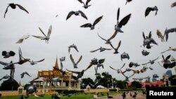 Hình minh họa - Chim bồ câu bay bên ngoài Cung điện Hoàng gia ở Phnom Penh, Campuchia.