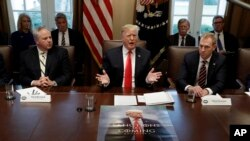 Le président Donald Trump prend la parole lors d'une réunion du cabinet à la Maison Blanche, le mercredi 2 janvier 2019 à Washington.