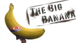 """The Big Banana"" shows the effects of an export banana plantation on the Mungo area of Cameroon"