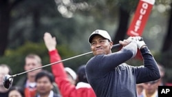 Tiger Woods of the US tees off the 1st hole during the Pro-Am event of the Shanghai HSBC Champions golf tournament, which begins Thursday, at the Sheshan International Golf Club in Shanghai, China, 3 Nov 2010