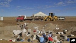 Σπάνια αποτυπώματα δεινοσαύρων βρέθηκαν στην Αυστραλία