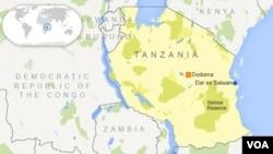 La célèbre réserve tanzanienne de Selous, en Tanzanie est menacé de voir disparaître ses éléphants à cause du braconnage.
