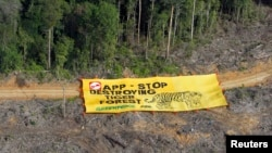 Kelompok Greenpeace memasang banner untuk memrotes perusakan hutan Bukit Tiga Puluh di provinsi Jambi oleh pabrik kertas Asia Pulp & Paper (APP) (Foto: REUTERS/Beawiharta)