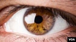 Los diabéticos precisan utilizar protección ocular adecuada.