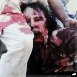 """""""Kadhafi morreu como uma ratazana"""" (c/ fotos)"""