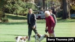 Президент Джордж Буш, перша леді Барбара Буш та їхні собаки Рейнджер і Міллі, 6 листопада 1990 року