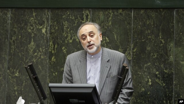 Foreign Minister of Iran Ali Akbar Salehi (file photo - January 30, 2011)