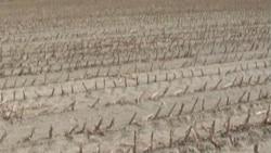 Drought Documentary: a Dry Season (Nov. 30)