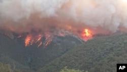澳大利亚东南部山火猛烈,烟雾漫天。2020年1月2日图片。