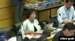 联合国反歧视委员会成员麦克杜格尔