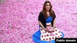 آریانا در میان گلبرگ های گل محمدی پیش از آن که به بهترین گلاب جهان تبدیل شوند. کاشان.