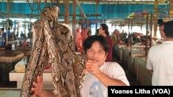 Ular sawah yang dijual di pasar ekstrim Tomohon dengan harga 50 ribu rupiah per satu kilogramnya, 10 Maret 2020. (Foto: VOA/Yoanes Litha)