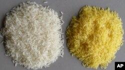 The vitamin A precursor beta carotene gives Golden Rice its color.