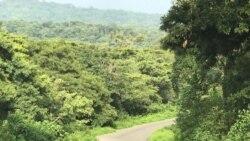 Bara Dabre Kana Godinaalee Oromiyaa 11 Keessatti Balaan Ibiddaa Mudate, Mootummaan Naannichaa