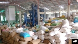 Rice mills factory in Cambodia.