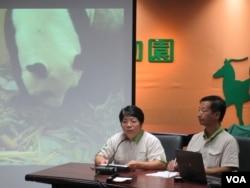 台北動物園新生熊貓新聞發佈會 (美國之音張永泰)