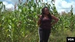 Diana Samkange-Nyazema, penyanyi ternama Zimbabwe yang beralih ke dunia pertanian (courtesy: VOA).