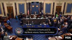 Голосование в Сенате об одобрении протокола о вступлении Македонии в НАТО