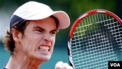 Petenis Andy Murray memenangkan turnamen Brisbane Terbuka sebelum menuju Australia Open 2012 (foto: dok).