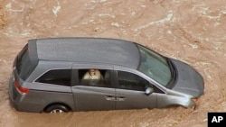 FILE - A woman sits trapped in a vehicle stuck in water in a wash flowing with storm runoff near the Anthem area in the far northern outskirts of metro Phoenix, Arizona.
