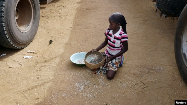 A girl gathers rice spilled from a humanitarian food convoy that arrived from the Malian capital Bamako in the northeastern city of Gao, Jun. 14, 2012.