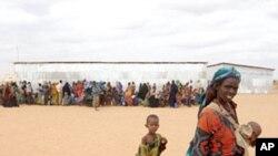 قرن افریقہ کے قحط زدہ علاقوں میں بارشیں، صورت حال میں بہتری