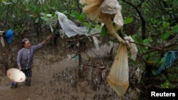 FILE - A woman removes plastic waste stuck in tree branches near the beach in Thanh Hoa province, Vietnam June 4, 2018.