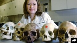 Dr. Lori Baker, a forensic scientist at Baylor University, seen here in this Aug. 29, 2003 file photo, launched a project to try to match unidentified remains found along the border.