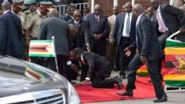 Zimbabwean President Robert Mugabe, center, falls after addressing supporters upon his return from an African Union meeting in Ethiopia, Wednesday, Feb. 4, 2015.