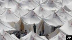 پناہ گزینوں کے مسائل میں اضافہ