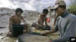 Penambang emas tradisional di Hampalit, Kalimantan Tengah. (Foto: Ilustrasi)