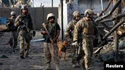NATO and Afghan troops arrive at the site of a suicide attack in Jalalabad March 26, 2013. Taliban suicide bombers killed at least five policemen in Afghanistan's restive east on Tuesday, officials said, in a three-hour attack that coincided with a visit