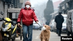 A man and his dog, both wearing masks, walk along a small alley on a hazy day in Beijing, February 23, 2014.
