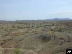 Tools made by early humans called Homo erectus were found at this site in Lake Turkana's ancient shoreline sediments in eastern Kenya.
