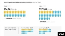 Houston's non-Hispanic white population.
