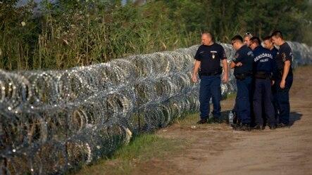 Cảnh sát Hungary kiểm tra một hàng rào thép gai dọc biên giới với Serbia, ngày 29/8/2015.