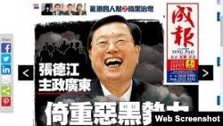 成报一周内四次炮轰张德江让外界大跌眼镜 (成报网站截图)