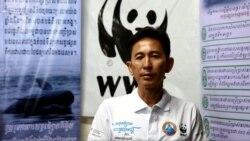 បទសម្ភាសន៍ VOA៖ ប្រធានអង្គការ WWF កម្ពុជាថាទំនប់វារីអគ្គិសនីដនសាហុងធ្វើឲ្យផ្សោតខេត្តក្រចេះអន្តរាយ