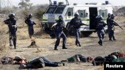 Policías observan los cadáveres de mineros sudafricanos, víctimas fatales de un enfrentamiento con la policía.