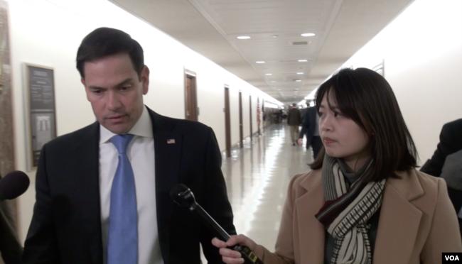 佛羅里達州共和黨籍聯邦參議員魯比奧(Sen. Marco Rubio, R-FL)接受美國之音採訪。 (2019年3月6日)