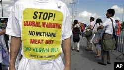 A protester stands outside the UN Climate Change Conference in Cancun, 30 Nov 2010