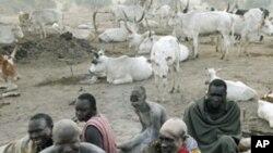 سوڈان: دارفر میں عیسائی تنظیم کو امدادی سرگرمیوں کی اجازت