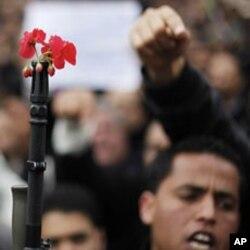 突尼斯茉莉花革命中示威者把花插到军人的枪管上,这后来影响到中国的茉莉花茶