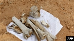 Các mảnh xương cốt tại nơi được cho là 1 ngôi mộ tập thể gần nhà tù Abu Salim ở Tripoli, Libya, Chủ Nhật 25/9/2011