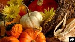 Американците го прославуваат Денот на благодарноста